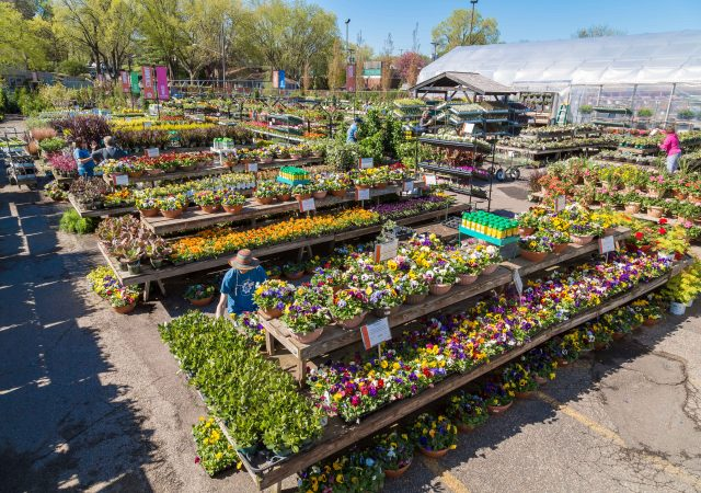 Sunnyside Gardens Minneapolis