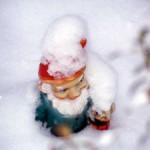 snowgnome