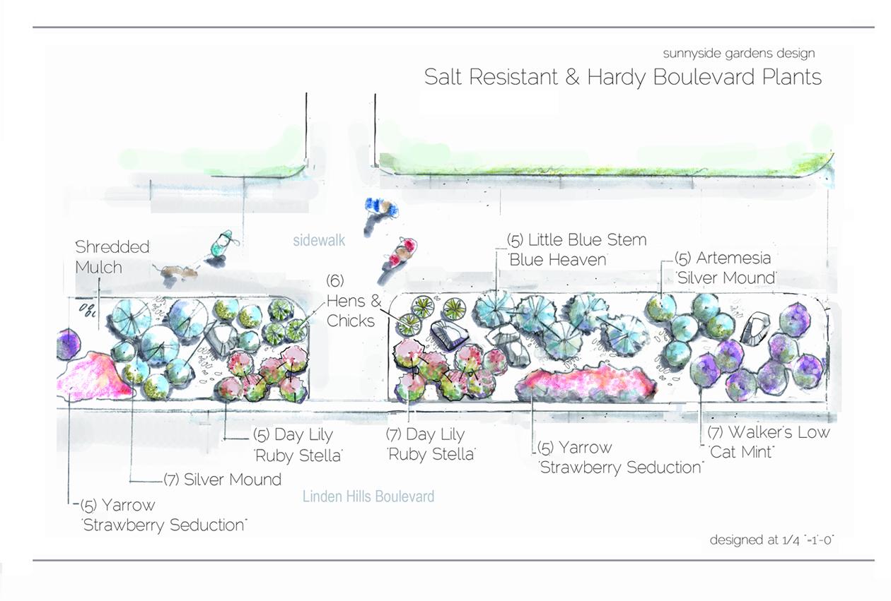 Boulevard Planting Design Drawing