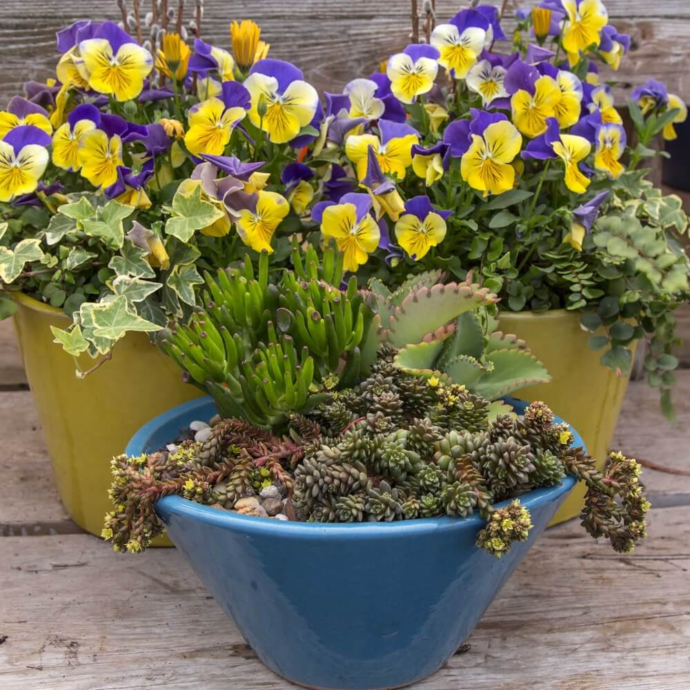 Spring Custom Containers