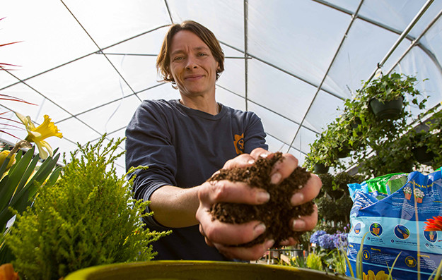 Sarah potting annuals