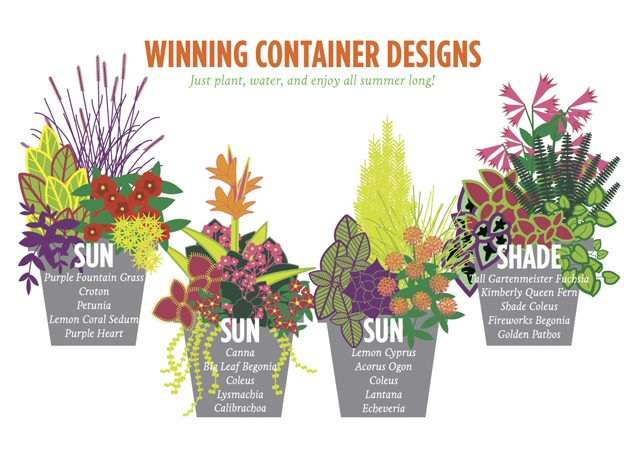 How to DIY Container Design