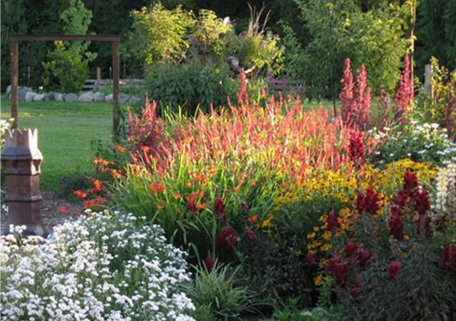 Exceptionnel Garden Maintenance
