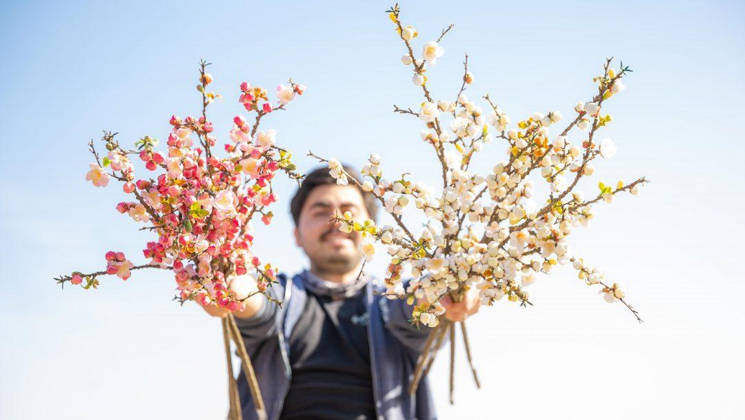 Faux Stems Cherry Blossom