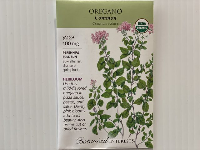 Oregano Common