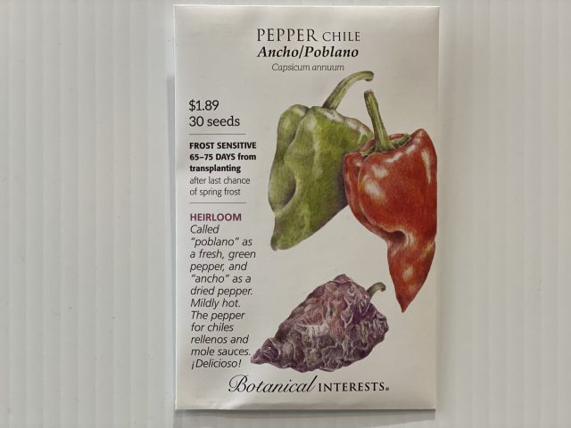 Pepper Chile Ancho/Poblano