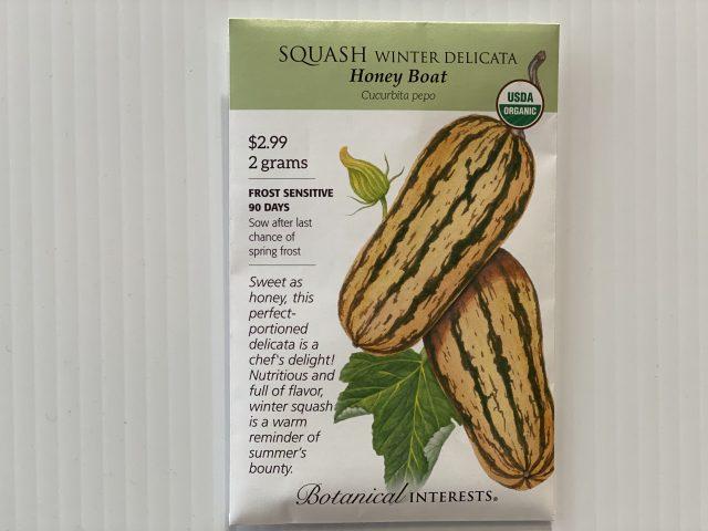 Squash Winter Delicata