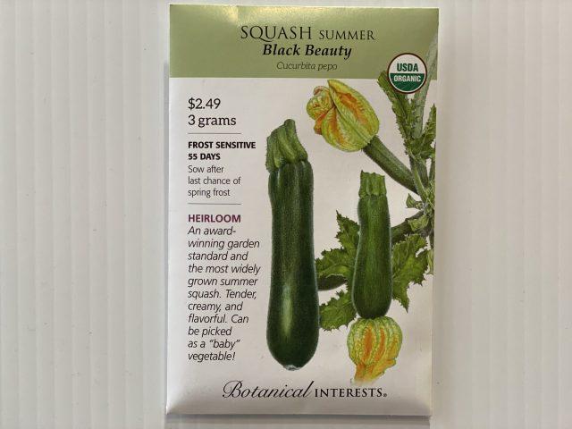 Squash Summer Black Beauty