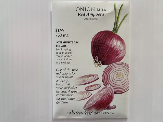 Onion Red Amposta