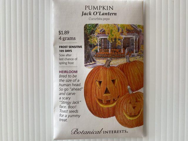 Pumpkin-Jack O'Lantern