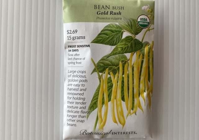 Beans Bush Gold Rush