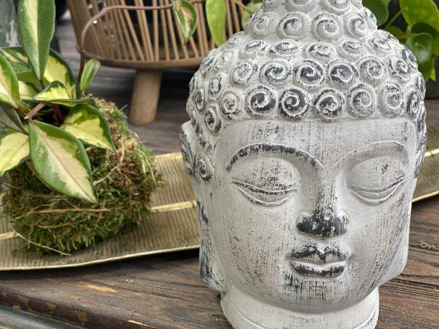 "Buddha Head-Cement 9"""