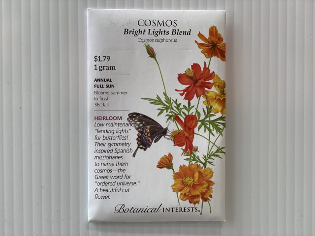 Cosmos Bright Lights Blend