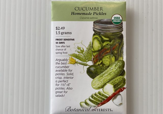 Cucumber Homemade Pickles