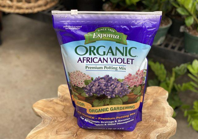 African Violet Soil-Organic