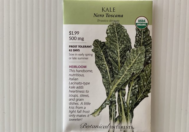 Kale Nero Toscana