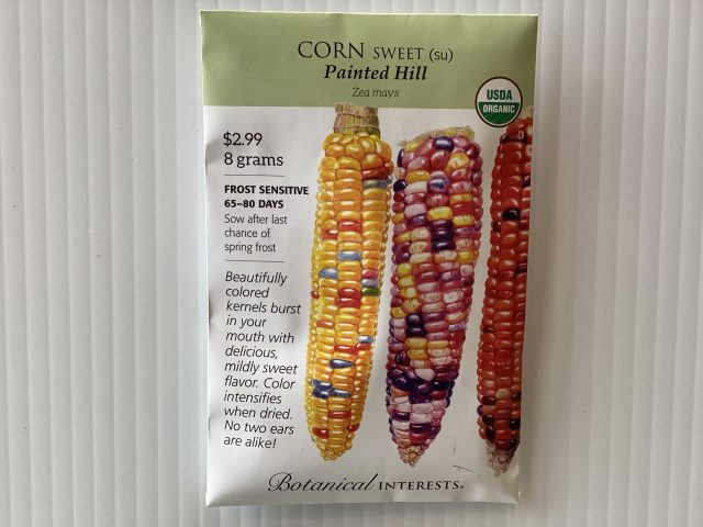 Corn Painted Hill