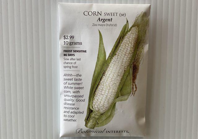 Corn Sweet Argent