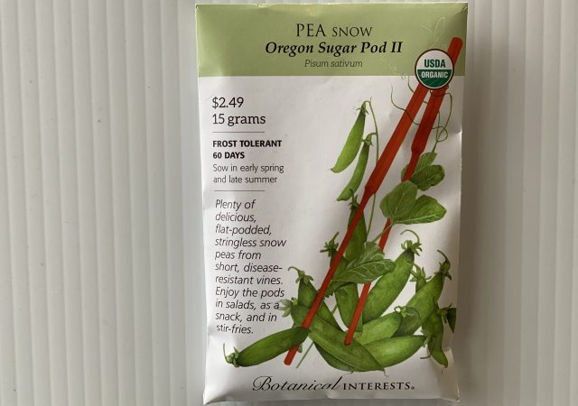 Pea Snow Oregon Sugar Pod II