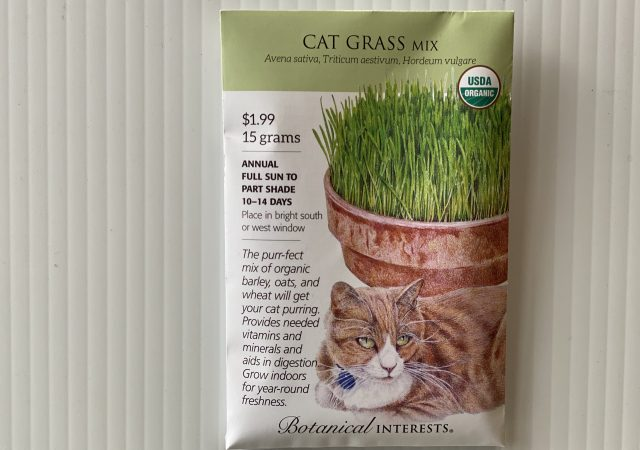 Cat Grass Mix