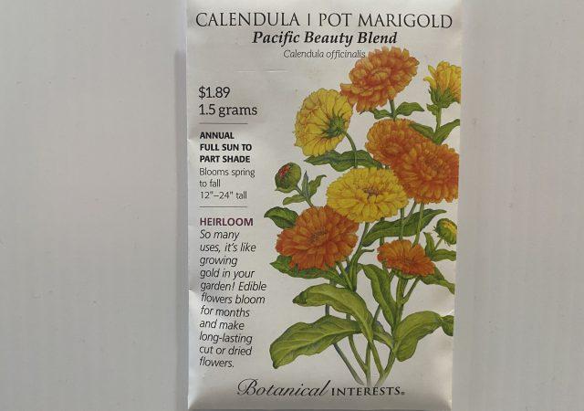 Calendula/Pot Marigold