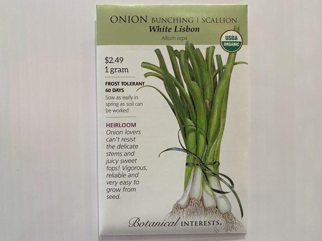Onion White Lisbon Scallions