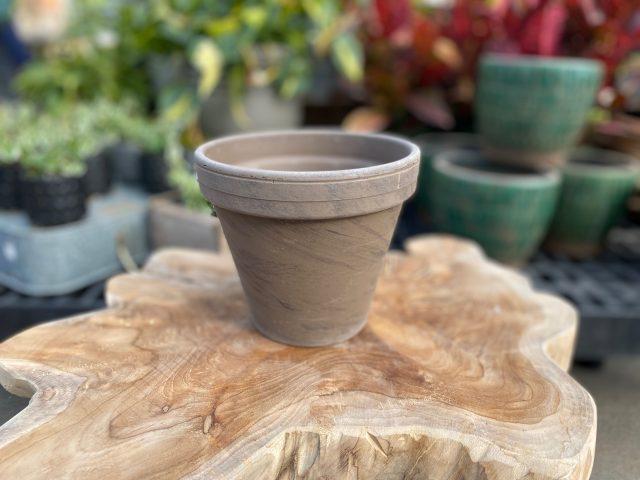 """Chocolate Terra Pot 6"""""""