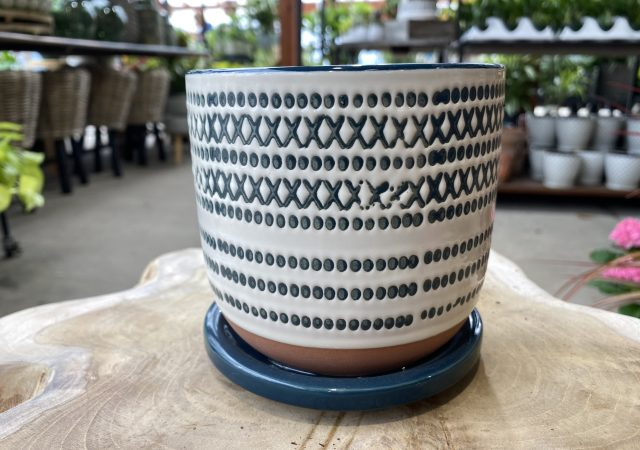 Planter with Saucer