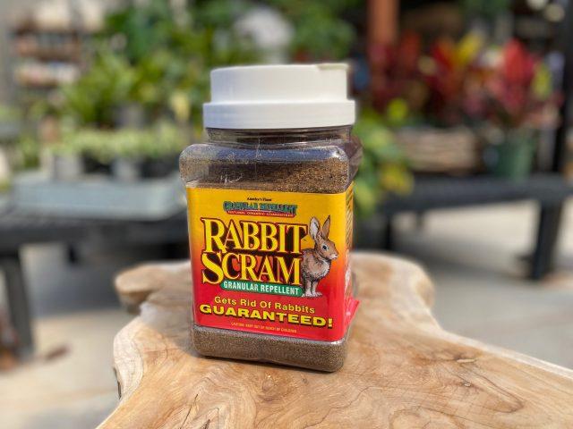 Repellant-Rabbit Scram