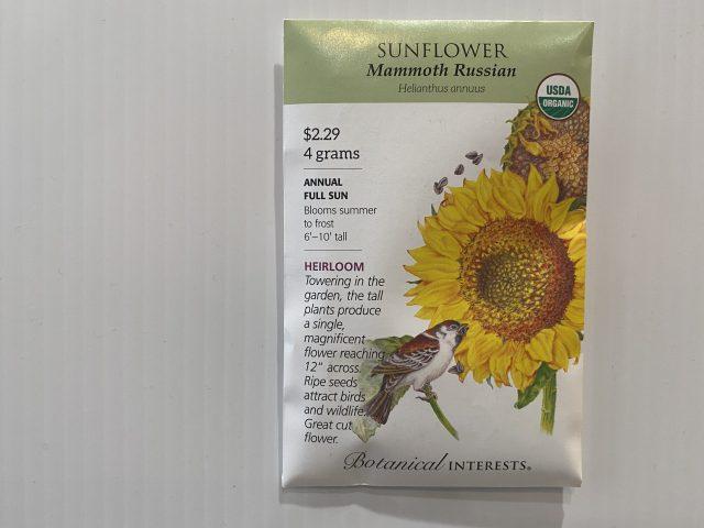 sunflower mammoth Russian