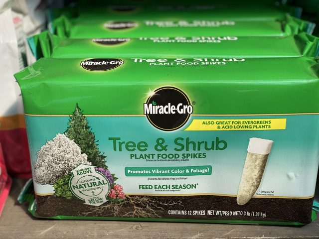 Tree & Shrub Miracle Gro