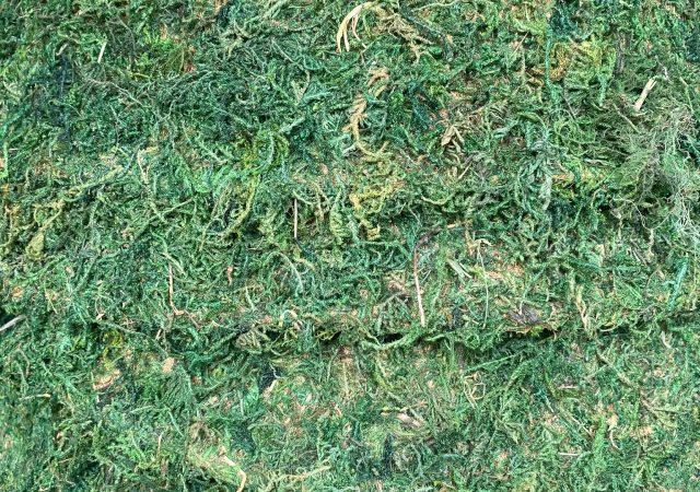 Moss Basket Liner