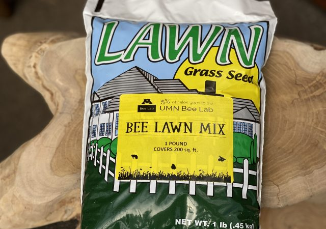 Bee Lawn Mix