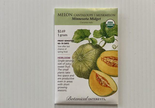 Melon Muskmelon Minnesota Midget