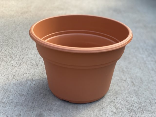"""Panterra Pot Clay 10"""""""