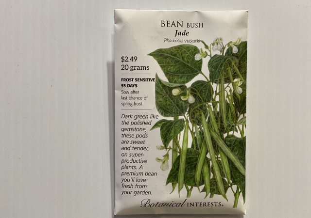 Bean Bush Jade