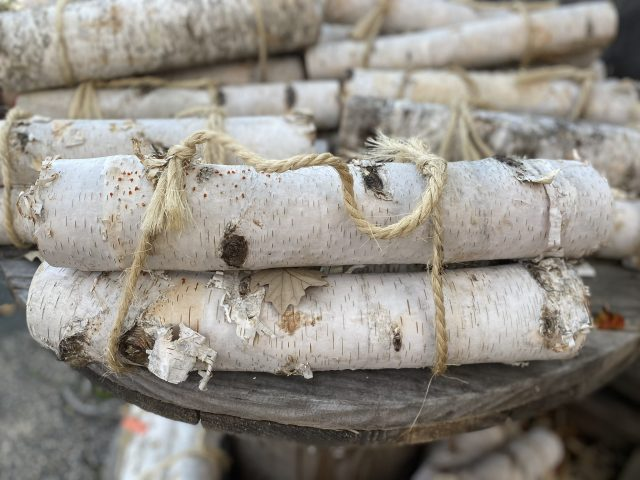 birch log bundle