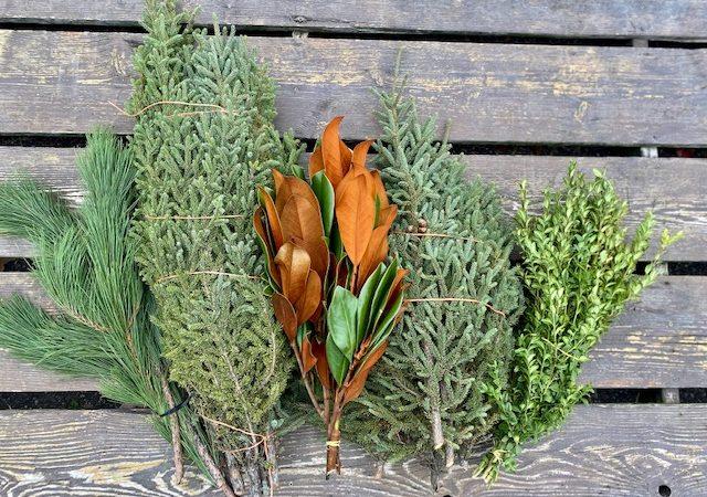Tree Top Pots